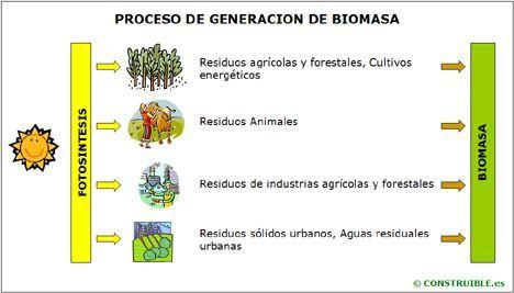 Biomasa1.jpg